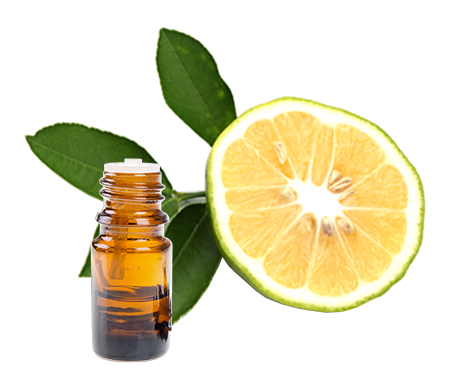 Essential oils of Bergamot